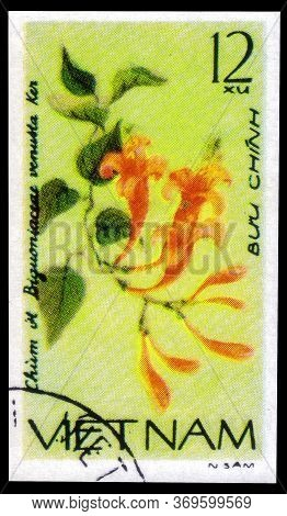 Saint Petersburg, Russia - May 31, 2020: Postage Stamp Issued In The Vietnam With The Image Of The B
