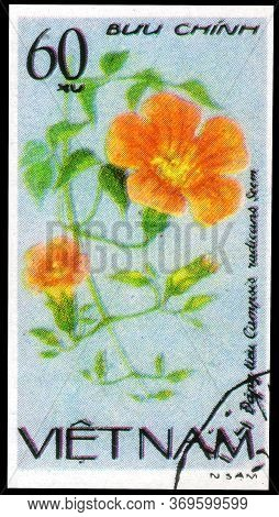 Saint Petersburg, Russia - May 31, 2020: Postage Stamp Issued In The Vietnam With The Image Of The T