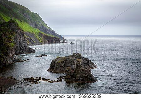 Scenic Rocky Shoreline Seascape With Green Vegetation - Gros Morne National Park, Newfoundland, Cana