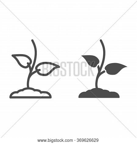 Small Sprout With First Leaves Line And Solid Icon, Spring Concept, Seedling Sign On White Backgroun