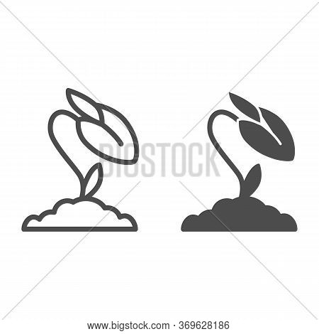 Flower Bud Line And Solid Icon, Floral Concept, Rose Closed Blossoms Sign On White Background, Rose