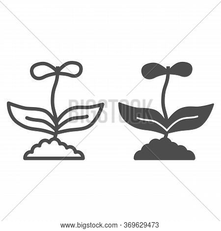 Flower With Two Petals Line And Solid Icon, Floral Concept, Spring Flower Blossom Sign On White Back