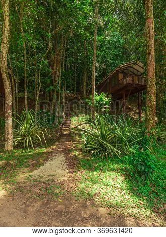 Brokopondo, Suriname - August 2019: Stairs Leading To Lodge In Tropical Amazonian Rainforest.