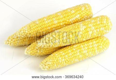 Fresh Raw Corn Cob Isolated On White Background