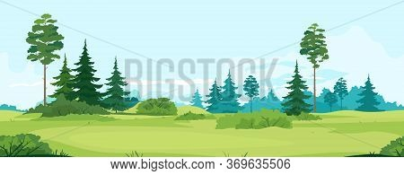 Path Along Green Valley With Spruce And Pine Trees Tillable Horizontally, Tourist Route Near Spruce