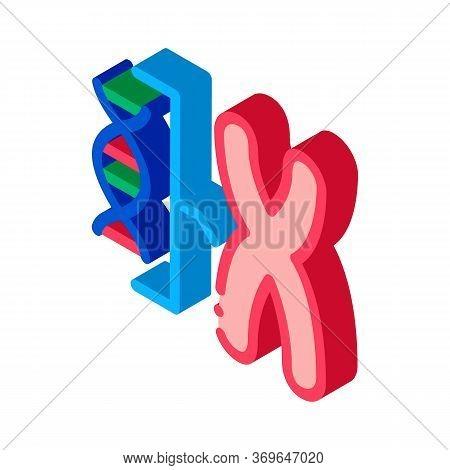 Chromosome And Molecule Icon Vector. Isometric Chromosome And Molecule Sign. Color Isolated Symbol I