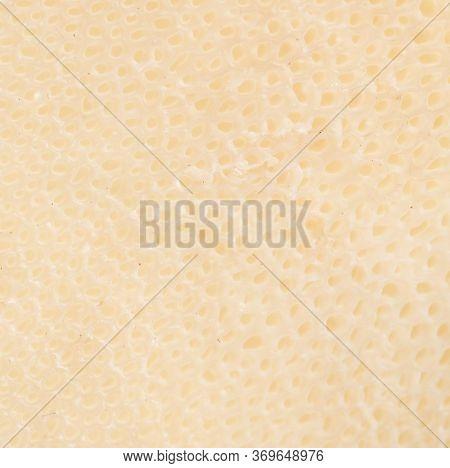 Mushroom Scaly Tinder Fungus As Background. Macro