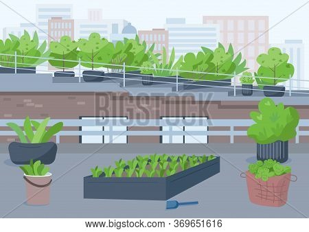 Rooftop Gardening Flat Color Vector Illustration. Outdoor Urban Place For Cultivating Potted Plants.