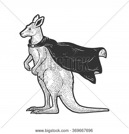 Kangaroo In Superhero Cloak Cape Sketch Engraving Vector Illustration. T-shirt Apparel Print Design.