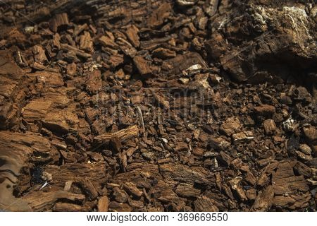 Wooden Background. Brown Wooden Background. Natural Background. Wooden Style. Wooden Pattern.
