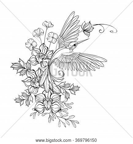 Artistically Drawn, Monochrome, Contour, Flying Hummingbird With Contour Orchids And Wildflowers On