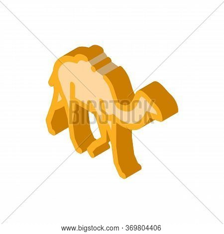 Camel Icon Vector. Isometric Camel Sign. Color Isolated Symbol Illustration