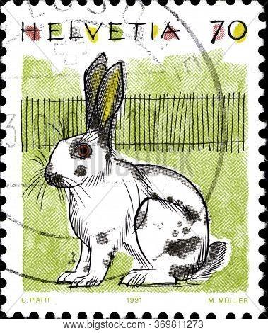 02 10 2020 Divnoe Stavropol Krai Russia The Postage Stamp Switzerland 1991 Animals Domestic Rabbit O