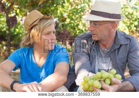 Winegrowers In Straw Hats Relaxing In Garden At Sunny Day. Father And Son Gardeners Speaking And Loo