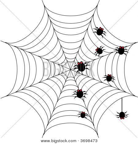Halloween Background With Spider Web 1