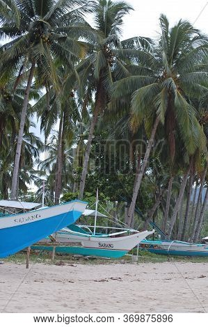 Palawan, Ph -  Nov 29 - Coconut Trees And Boats At Sabang Beach On November 29, 2009 In Puerto Princ