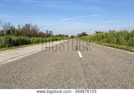 Country Road In The Southern Camargue District, South France
