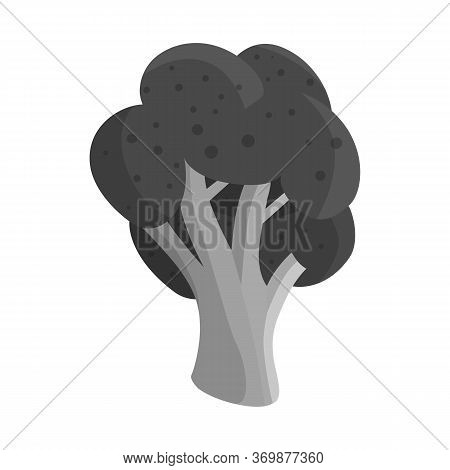 Vector Illustration Of Broccoli And Doodle Sign. Set Of Broccoli And Salad Vector Icon For Stock.