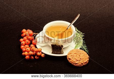 Gourmet Delicious Taste. Ceramic Cup Hot Fresh Brewed Tea Beverage. Health Care Folk Remedies. Drink
