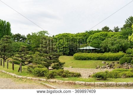 Japanese Landscape Beautiful  Public Pine Trees Green Garden,the Traditional  Pavilion In The Center