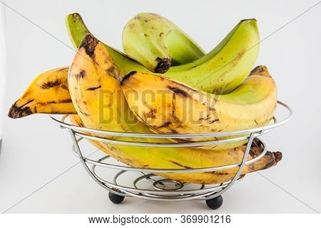 Plantain or Green Banana (Musa x paradisiaca) isolated in white background