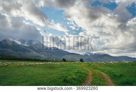 High Tatras (vysoke Tatry) Mountains Landscape Shot With The Country Road,grazing Sheep Herds. Lomni