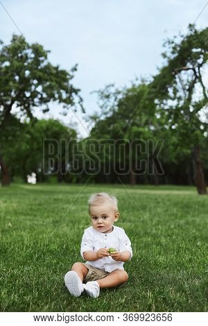 Little Baby Boy In White Shirt And Shorts Sitting Alone On The Grass In Summer Day. Small Kid 1-year