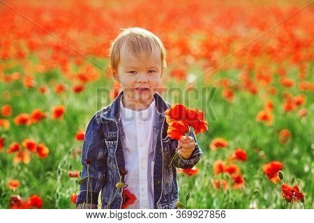 Laughing Toddler Boy Standing In Poppy Field