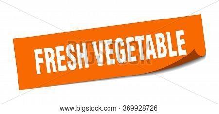 Fresh Vegetable Sticker. Fresh Vegetable Square Sign. Fresh Vegetable. Peeler