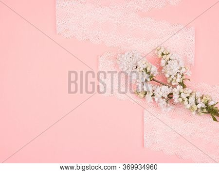 Branch Of White Lilac And Lace. Pink Background.