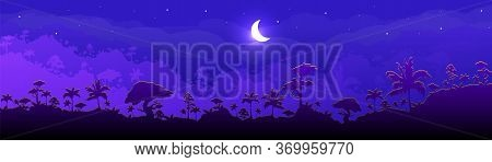 Jungle Flat Color Vector Illustration. Night Forest Scenery. Panoramic Woods With Cresent Moon. Trop