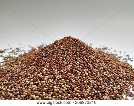 Raw Ragi Is A Rich In Protein, Fiber, Calcium, Iron, Prevents From Osteoporosis And Cholesterol, Str