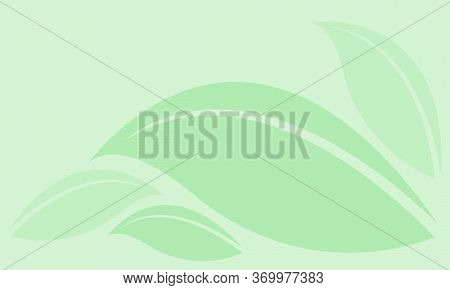 Leaf Graphic Green Soft For The Background, Leaf Light Green Graphic For Copy Space, Nature Backgrou