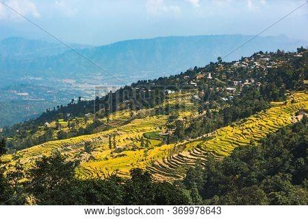 Terraced Farming In Nepal. Asian Landscape