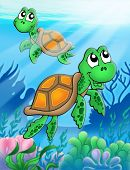 Little turtles in blue sea - color illustration. poster
