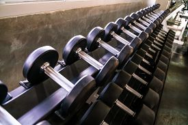 Dumbbell Weight Lift On Roll In Sport Gym