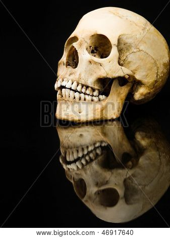 Human skull with mirror image isolated on black