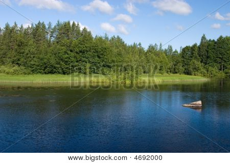 Forest Lake With Stone
