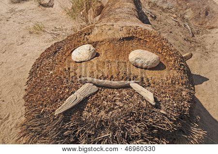Natural Art In The Desert