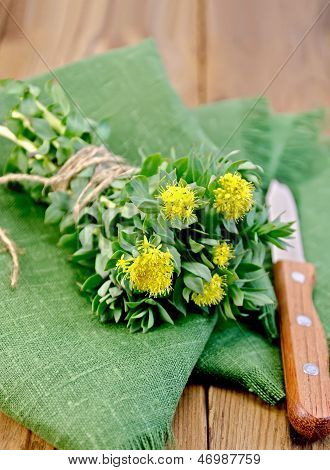 Rhodiola rosea flowers tied with string with a knife on a green napkin on a background of wooden boards poster