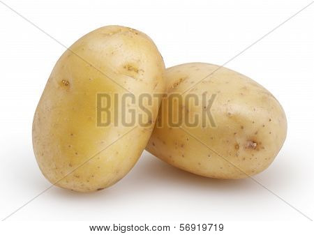 Two Potatoes Isolated On White Background With Clipping Path