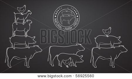 Animals Pyramide, natural, farm, fresh