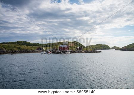 Houses And Small Harbor On Island In Northern Norway