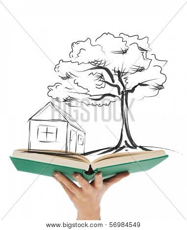 education, real estate and accomodation concept - close up of woman hand holding open green book