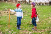 Kid girl shepherdess sisters happy with flock of sheep and wooden stick in Spain poster
