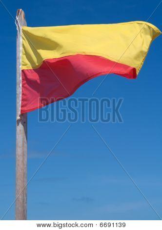 Beach Swimming Flag
