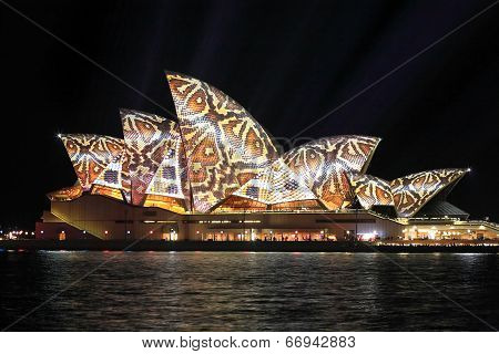 Sydney Opera House In Reptile Snake Print Pattern Vivid Sydney