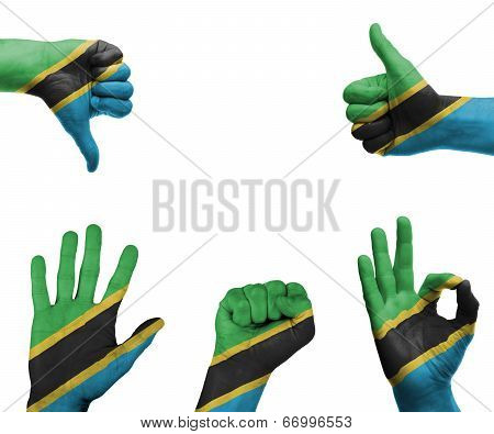 Hand Set With The Flag Of Tanzania
