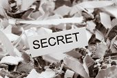 shredded paper tagged with secret, symbol photo for data destruction, banking secrecy and economic espionage poster