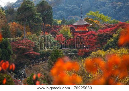 Kiyomizu-dera in autumn seasonThe leave change color of red castle in japan